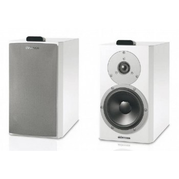 Dynaudio Xeo 4. Wireless active speaker.