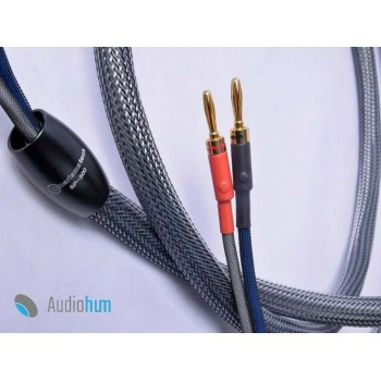 Charismatech Speaker cable SP-300